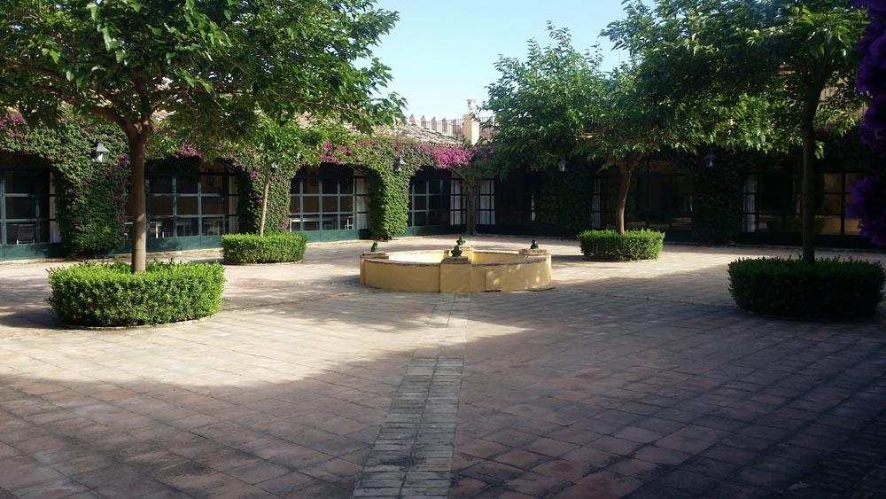 patio-molino-5